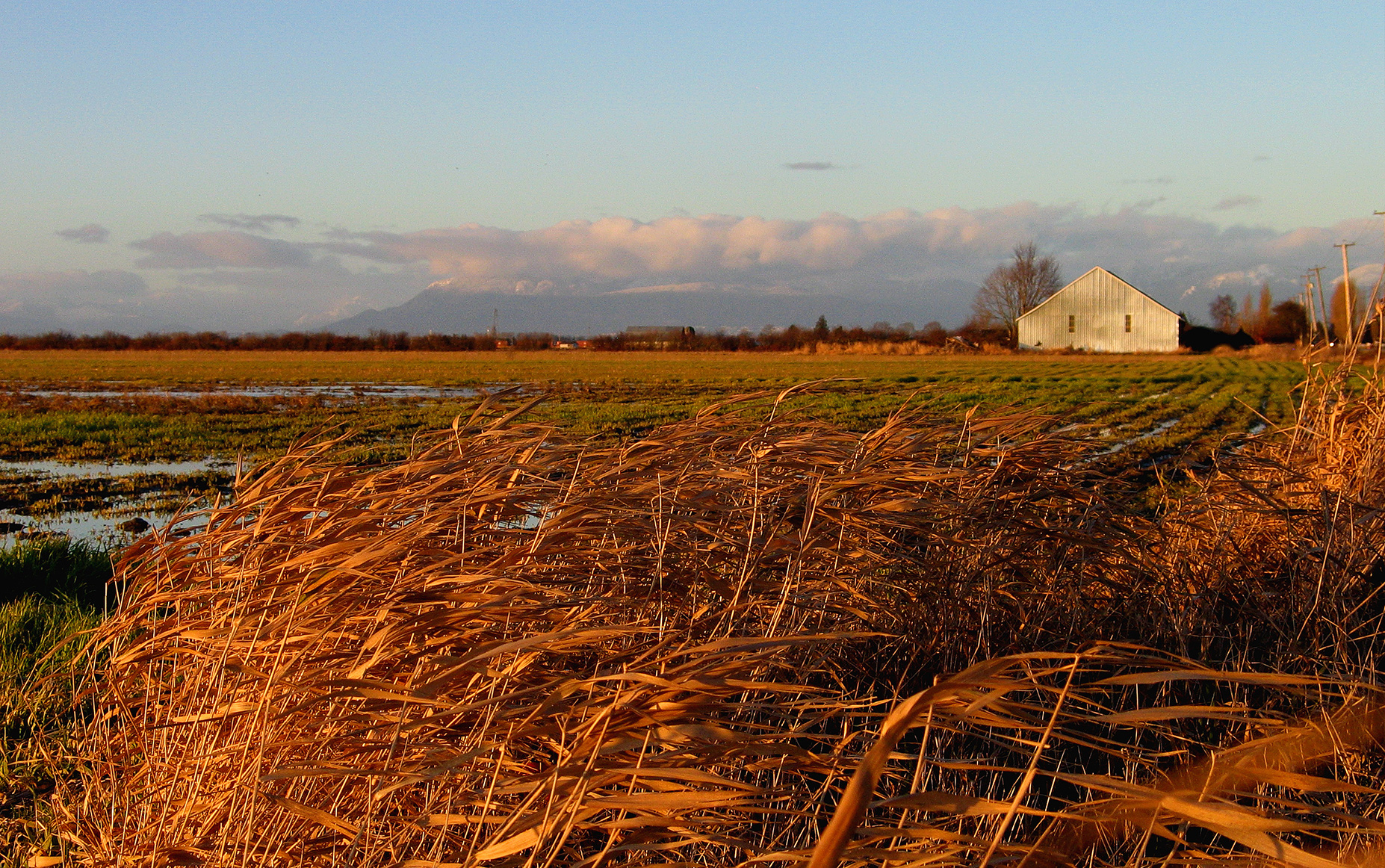 Bill 15 - Agricultural Land (Photo: Gord McKenna)